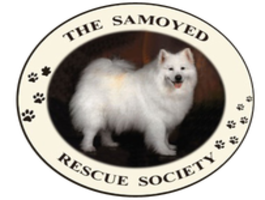 Samoyed Rescue Society